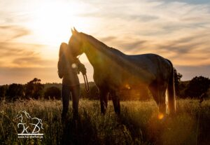 Sonnenuntergangs Fotoshooting mit Pferd