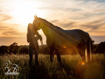 Fotoshootings im Sonnenuntergang – das Zauberlicht
