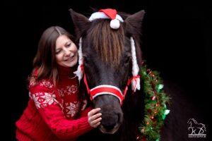 Fotoshooting schwarzer Hintergrund Islandpferd Weihnachten